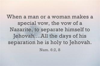 Samson Num 6-2