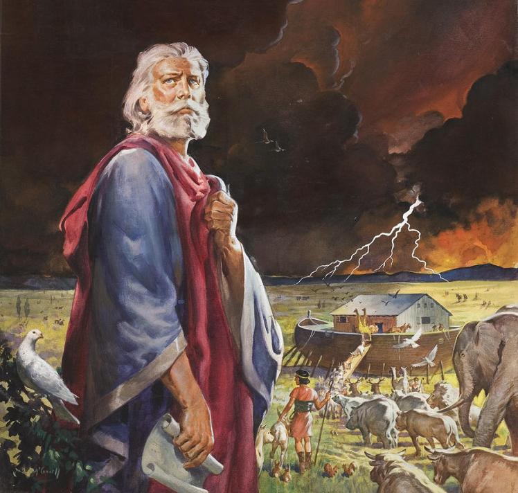 Noah's Ark McConnell